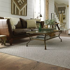 Carpeting | Carpets by Direct