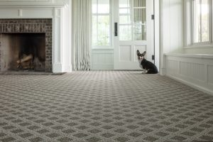 Dod near door on Carpet floor | Carpets by Direct
