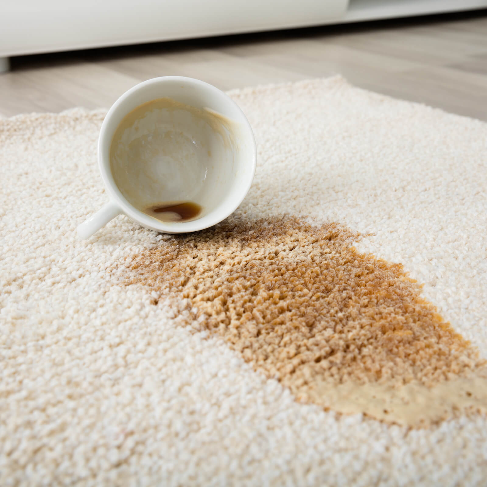 Coffee spill on area rug | Carpets by Direct