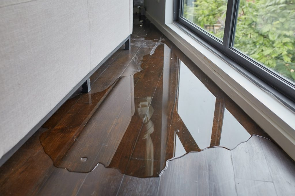 How to Deal with Flood Damage | Carpets by Direct